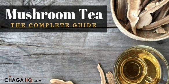 mushroom-tea-the-complete-guide-1020x510